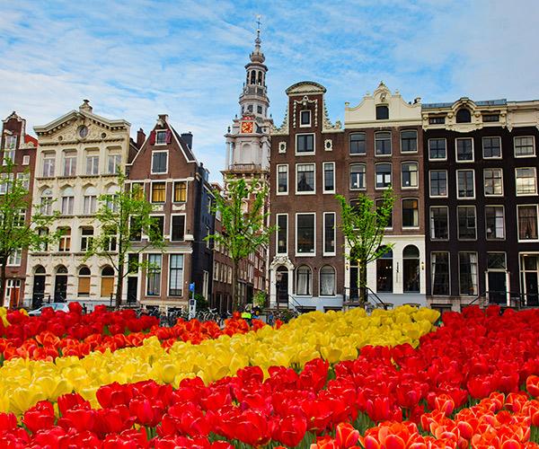 Lalele, Amsterdam