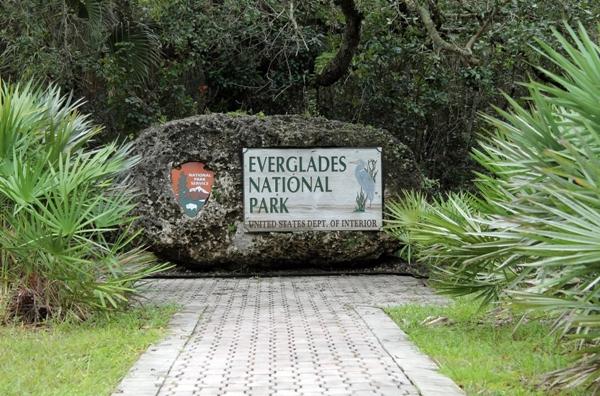 Parcul Everglades, Miami
